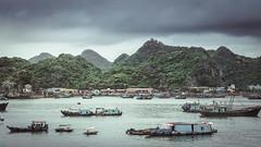 Cat Ba Bay (Alain@BlueSunset) Tags: catba bay baie eau water sea mer bateaux ships boats vietnam mountains hills collines montagnes forêt forest port harbor