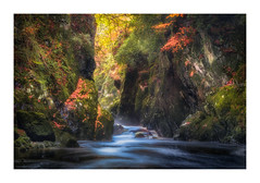 Fairy Glen (Rich Walker Photography) Tags: wood landscape gorge landscapephotography autumn colour wales canon eos landscapes snowdonia efs1585mmisusm eos80d