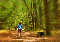 Promenons-nous, dans les bois … (Le.Patou) Tags: smileonsaturday peopleandpets aquitaine medoc vensac fz1000 wood son boy dog pet green django grandson undergrowth tree