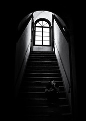 Street potography Italy - Lucca (www.streetphotography-berlin.com) Tags: street streetphotography streetlife indoor light shadows stairway window young man smartphone blackandwhite blackwhite monochrome fineart