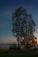 Trees by Lake (Ma.Ha.) Tags: tree trees lake sunset moonrise moon crescent blue wather sky finland scandinavia summer dawn evening helsinki europe