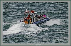 Photo of Seal Safari CRW_2546