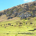 Chile-03027 - Rapa Nui National Park