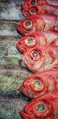 Frischer Fisch... (D.Purkhart) Tags: fisch markt santacruzdetenerife teneriffa kanaren canarias mercado seafood