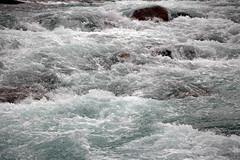 Rushing Waters III (JB by the Sea) Tags: banff banffnationalpark alberta canada september2019 rockymountains rockies canadianrockies icefieldsparkway highway93 mistayacanyon mistayariver water aquatic