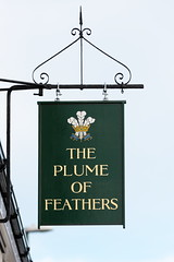 The Plume of Feathers pub sign Horsham West Sussex UK (davidseall) Tags: the plume feathers pub pubs sign signs inn tavern bar public house houses horsham west sussex uk gb british english hanging lost closed down