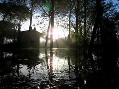 IMG_0060x (gzammarchi) Tags: italia paesaggio natura ravenna marinaromea piallassabaiona piallassa lago stagno albero pino capanno riflesso scuro