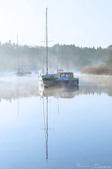Le port d'Hennebont (Yohann Hamonic) Tags: blavet valléedublavet yohannhamonic yhamophotos hennebont brume ambiance sunrise