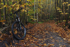 A Autumn cycle ride...... (favmark1) Tags: autumn kent cycle cycleride