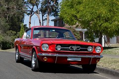 289 (l plater) Tags: 1967fordmustang289 sydney