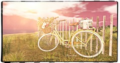 My summer bike (ᏞᎾᏉᎪ ᏞᎬᎬh) Tags: summer bike end fall love time flower second life lov lova leeh