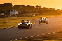 Goodwood Revival 2019 (Velosnapper) Tags: 250swb astonmartin ferrari goodwood revival motorsport race cars auto car speed classic
