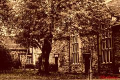 Durham (1997) (red.richard) Tags: sepia durham tree buildings nikon d800 cof092 cof092mcas cof092tino cof0922007 cof092dmnq