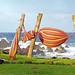 Chile-03279 - Windy