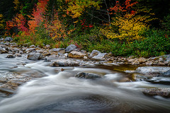 Swift River whirlpool (FotoFloridian) Tags: autumn beautyinnature fallcolors flowing flowingwater forest freshness greencolor leaf mountain newhampshire outdoors river rockobject scenics sony stream swiftriver tree waterfall whirlpool woodland a6400 alpha landscape longexposure nature water