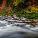 Swift River whirlpool