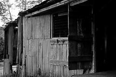 Breaking Down (pjpink) Tags: rustic abandoned overgrown blackandwhite bw monochrome uncolored colorless littlewashington washington virginia july 2019 summer pjpink 2catswithcameras