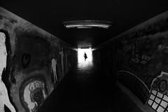 Framed (CoolMcFlash) Tags: tube tunnel person silhouette bw bnw blackandwhite blackwhite street streetphotography fujifilm xt2 vienna graffiti citylife city urban durchgang kontur contrast kontrast sw schwarzweis wien stadt fotografie photography samyang fisheye