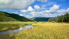 'Pinter Marshlands' (tlbphotovideo75) Tags: nationalgeographic wilderness clouds sky water nature marshlands forest woods