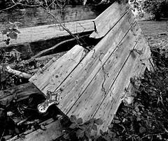Breaking Up (pjpink) Tags: rustic abandoned overgrown blackandwhite bw monochrome uncolored colorless littlewashington washington virginia july 2019 summer pjpink 2catswithcameras