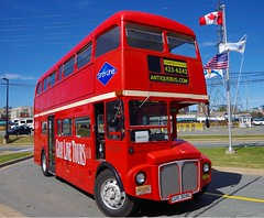 AEC Routemaster - Absolute Charters Halifax Nova Scotia (scotrailm 63A) Tags: buses coaches aec routemaster