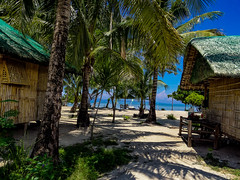 The very simple bamboo huts accomodations in tropical beach. They provide genuine tropical feelings. (catching image memories) Tags: cagbaleteislandquezonprovince philippines tropicalbeach tropical tropicalsea beachfront coconuttrees coconuts water sea whitesands nature hotweather sunnyday sunny beachlife flickrcentral inexplore beautifulcapture explore trending follow following follower followers view views comment comments favorites favorite faves fave