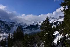 DSC_0281 (Bergwandern Alpen) Tags: alpen alps bergwandern hiking sernftal nebel nebelschwaden fog wolken wolkenspiel clouds bergpanorama glarneralpen berglandschaft mountainlandscape bergwald mountainforest gamperdunerwald hochalpin