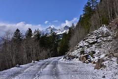 DSC_0319 (Bergwandern Alpen) Tags: alpen alps bergwandern hiking winter winterlandschaft winterlandscape bergstrasse grosschärpf blistock