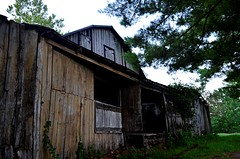 Barn (pjpink) Tags: littlewashington washington virginia july 2019 summer pjpink 2catswithcameras abandoned overgrown