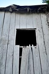 Dark Passage Entrance (pjpink) Tags: littlewashington washington virginia july 2019 summer pjpink 2catswithcameras abandoned overgrown