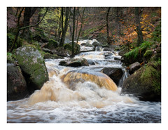 Burbage Brook in spate (fishyfish_arcade) Tags: gx7 landscape lumix padleygorge peakdistrict gvariof35561260mm burbagebrook river cascade rapids autumn fall