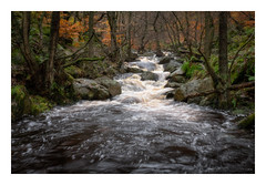 Burbage Brook in Padley Gorge (fishyfish_arcade) Tags: gx7 landscape lumix padleygorge peakdistrict gvariof35561260mm burbagebrook river cascade rapids autumn fall