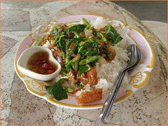 Khon Kaen Bus Station Rice 20190521_131330 LG (CanadaGood) Tags: asia seasia asean thailand thai ราชอาณาจักรไทย isaan khonkaen bus station vendor sign food restaurant rice canadagood 2019 thisdecade color colour cameraphone