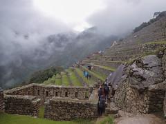 PB072874 (PhilGuinto) Tags: olympus pérou voyage machupicchu peru amérique amériquedesud america southamerica travel