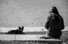 An autumn day (Jose Rahona) Tags: smileonsaturday peopleandpets people pets park blackandwhite bw blancoynegro monochrome