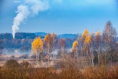 Late autumn around Cracov. Poland.
