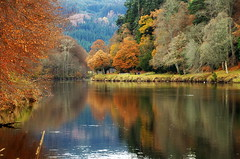 Late Autumn on the river Tay (eric robb niven) Tags: ericrobbniven scotland dunkeld perthshire landscape dundee rivertay springwatch