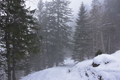 DSC_0028 (Bergwandern Alpen) Tags: alpen alps bergwandern hiking winter winterlandschaft schnee schneelandschaft nebel snow winterlandscape