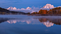 Morning At The Oxbow (chasingthelight10) Tags: events photography travel landscapes foliage mountains meadows rivers sunrise sunset places wyoming grandtetonnationalpark oxbowbend willowflats snakeriver otherkeywords dawn willows things reflection