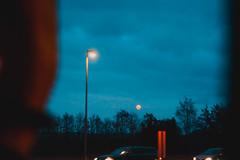 20191110-DSC02451 (Emma Bak) Tags: sweden nature people car ocean forest birds landscape sonya6000 evening edit elder fog fantasy fireplace sunset sun skies atmosphere architecture amazing beach neon