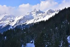 DSC_0150 (Bergwandern Alpen) Tags: alpen alps bergwandern hiking winter winterlandschaft schnee schneelandschaft bergwald gamperdunerwald bergpanorama grosschärpf blistock berghütte alpehütte mountainhut snow winterlandscape mountainlandscape mountainforest