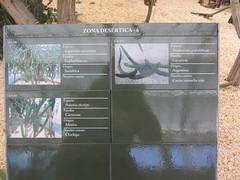Plant information, Desert Zone  6 (d.kevan) Tags: madrid plants arganzuelahothouse zonadesértica6 family photos species paths description origin commonname