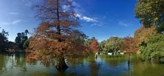 """Lago y árboles"" (atempviatja) Tags: barcelona ciudadela árboles paseo agua lago naturaleza parque"