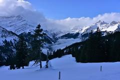 DSC_0130 (Bergwandern Alpen) Tags: alpen alps bergwandern hiking sernftal winter schnee winterlandschaft schneelandschaft wolken wolkenschpiel nebel snow winterlandscape mountainlandscape clouds fog glarneralpen