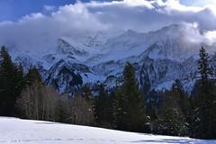 DSC_0264 (Bergwandern Alpen) Tags: alpen alps bergwandern hiking winterlandschaft berglandschaft wolken wolkenspiel mountainlandscape winter bergwald clouds