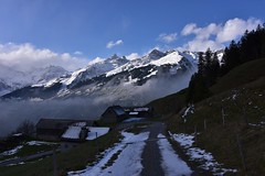 DSC_0365 (Bergwandern Alpen) Tags: alpen alps bergwandern hiking gamperdunerstäfeli sernftal glarneralpen nebelschwaden
