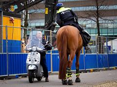 Small vs Big © Inge Hoogendoorn (ingehoogendoorn) Tags: contrast horse policehorse bighorse scooter small big streetphotography straatfotografie streetscene police politie grootklein kleingroot klein groot denhaag thehague