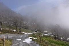 DSC_0403 (Bergwandern Alpen) Tags: alpen alps bergwandern hiking bergstrasse nebel winter nebelschwaden fog zaun fence mist