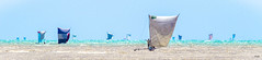 A l'abordage ! (Fabrice L.) Tags: mada2017 morondave pêche m madagascar bateau pirogues voiles sailing sails pirate pirates abordage mer sea colors couleurs flotille cof086mark cof068lep cof086unic cof086dmnq cof086chri