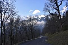 DSC_0449 (Bergwandern Alpen) Tags: alpen alps bergwandern hiking bergstrasse grosschärpf blistock